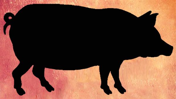 Bacon-Bash 1
