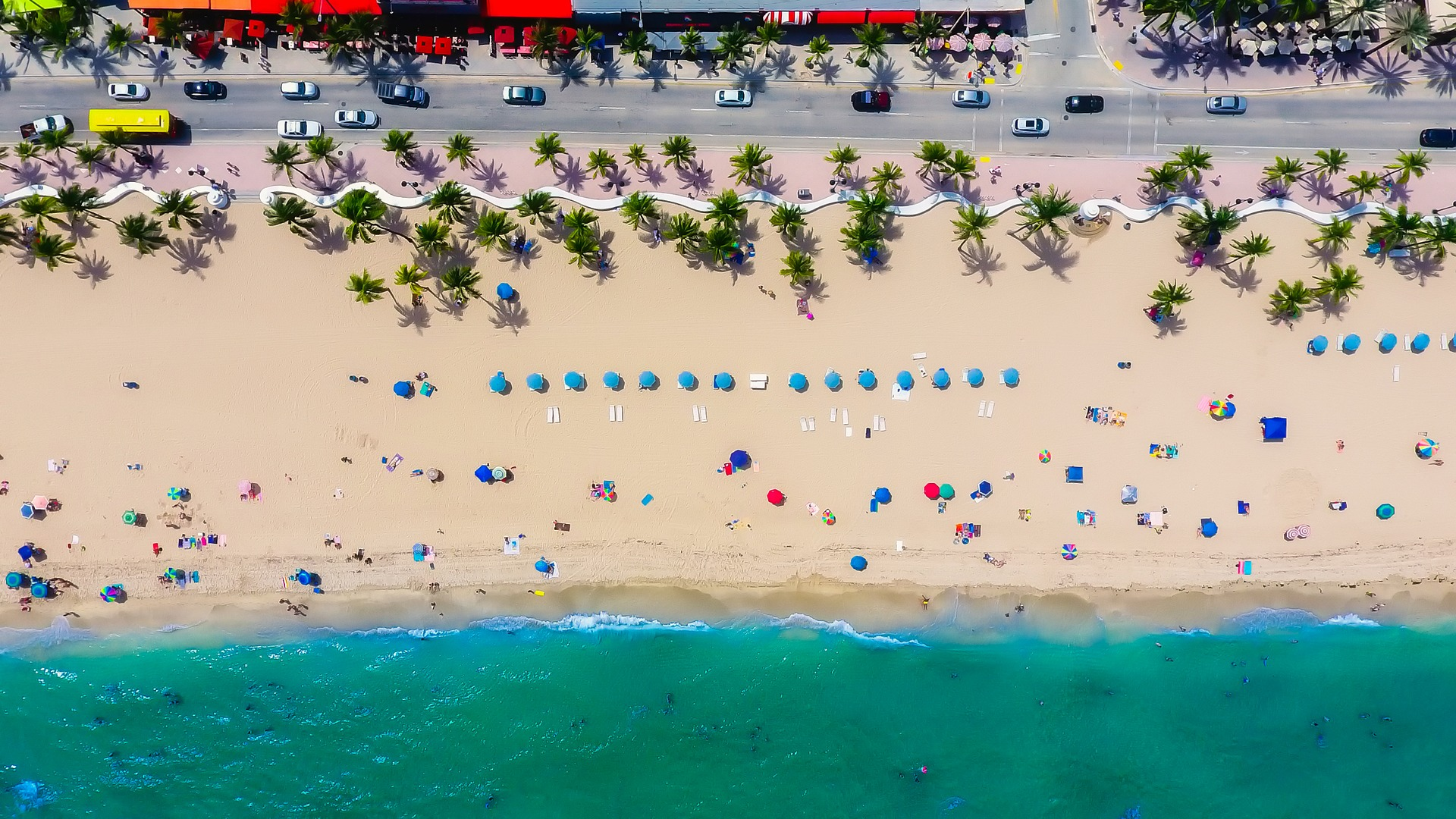 What to Know Before Buying in South Florida